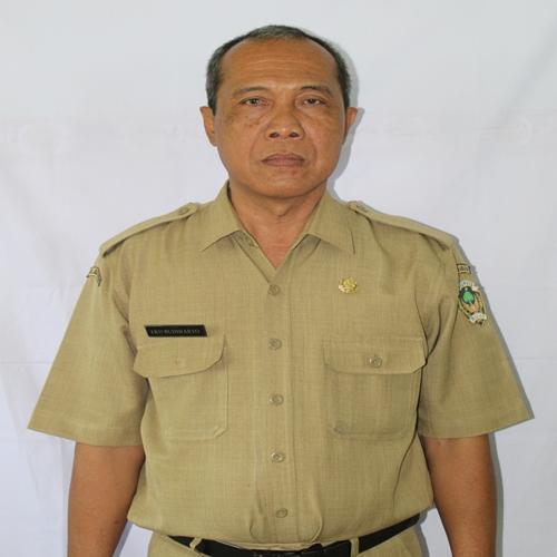 Drs. EKO BUDIHARTO